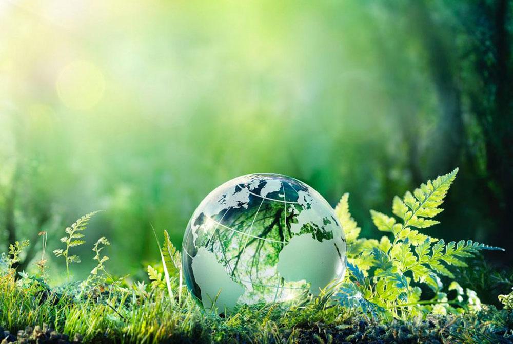 """""""Green deal"""" : un pacte vert européen ambitieux présenté le 11 décembre au Parlement"""